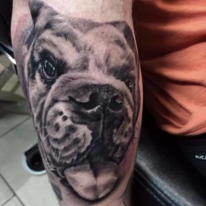 Bulldog_Tattoo_Abdiel_Pedraza